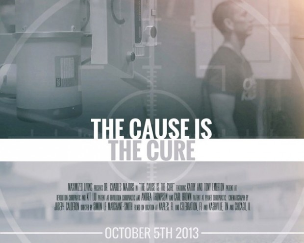 The-Cause-is-the-Cure-Poster-for-web_2